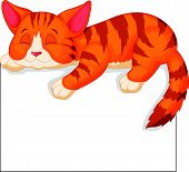 Cute cat cartoon sleeping