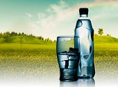 Spring Mineral Water