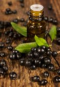 image of elderberry  - bottle of essential oil and berries elderberry on wooden - JPG