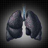 Human Lung Disease
