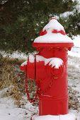Snowy Red Hydrant