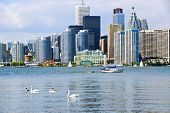 Toronto harbor skyline with skyscrapers sailboat and swans