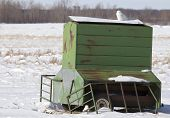 Grain feeder with snowy owl