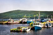 Harbor with various fishing boats in Newfoundland Canada