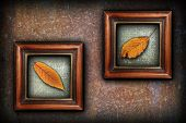 Display Of Autumn Symbols