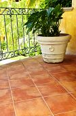Tiled Mexican balcony with potted plant near railing