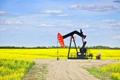 image of nod  - Oil pumpjack or nodding horse pumping unit in Saskatchewan prairies - JPG