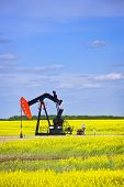 foto of nod  - Oil pumpjack or nodding horse pumping unit in Saskatchewan prairies - JPG