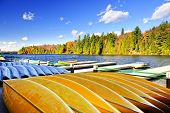 Canoes for rent on fall lake in Algonquin Park, Ontario, Canada