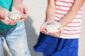 foto of sand dollar  - Close up of kids hands holding sand dollars - JPG