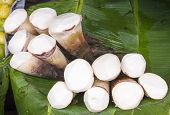 Bamboo Shoot - Bamboosaceae Thailand Market