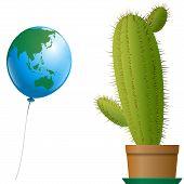 Balloon Asia Australia Cactus