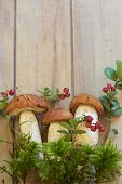 Fresh mushrooms with moss and cranberry