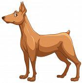 Illustration of a closeup dog