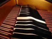 Piano Hammer