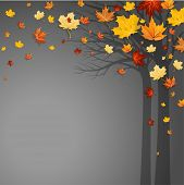 Fallen autumn leaves with space for text