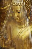Abrigo de la cabeza de bronce de Buda