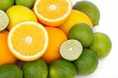 Mix of fresh citrus fruits
