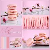 Pink Macarons Collage With Vintage Shabby Chic Theme And Spring Blossoms With Sample Text And Color
