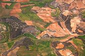 Aerial view of rural area / green fields and olive trees plantations / Spain