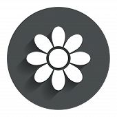 Flower sign icon. Blossom symbol.
