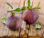Two Fresh Figs