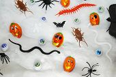 Different Halloween Candies And Toys On A Webbing Background