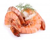 Fresh boiled prawns on white background isolated