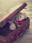 Little teddy bear sitting in an open vintage suitcase