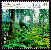 Postage Stamp Germany 2005 Bavarian Forest National Park