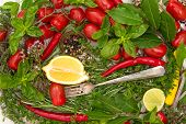 Fresh Vegetables, Herbs And Spices. Healthy Mediterranean Cuisine