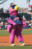 Slider, the Indians' mascot