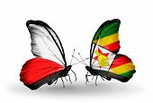 Two Butterflies With Flags On Wings As Symbol Of Relations Poland And Zimbabwe