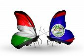 Two Butterflies With Flags On Wings As Symbol Of Relations Hungary And Belize