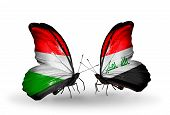 pic of iraq  - Two butterflies with flags on wings as symbol of relations Hungary and Iraq - JPG