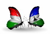Two Butterflies With Flags On Wings As Symbol Of Relations Hungary And Lesotho