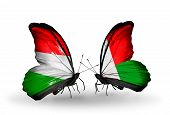 Two Butterflies With Flags On Wings As Symbol Of Relations Hungary And Madagascar