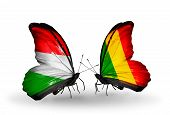 Two Butterflies With Flags On Wings As Symbol Of Relations Hungary And Mali