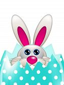 Easter Bunny Looking Up In Spring Egg With Place For Text