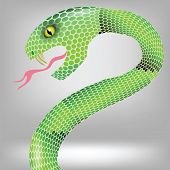 stock photo of green whip snake  - colorful illustration with green snake attack on grey backgrounds - JPG