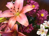stock photo of asiatic lily  - A bouquet of colorful stargazer lilies and other flowers - JPG