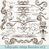 Collection Of Vector Calligraphic Decorative Flourishes In Vintage Style