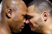 Boxer Rivals