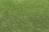 Artificial Green Grass Turf Texture Background