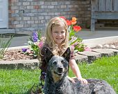 stock photo of blue heeler  - Cute Little Girl Sitting in Front of Her Home With Her Dog - JPG