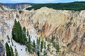 Side Wall Of The Canyon Of The Yellowstone In Wyoming During Summer
