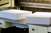 White Empty Papers On A Paper Cutter Machine