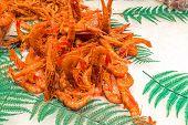 Fresh shrimps for sale