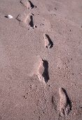 Footprints in Pink Sand