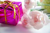 foto of carnation  - carnation flowers and gift box for celebration - JPG